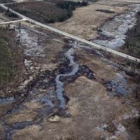 Российские экологи: Нельзя позволять нефтяному бизнесу зарабатывать на разрушении природы