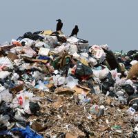Россию ожидает мусорный коллапс