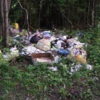 Как коммунальные предприятия и местные власти создали «мусорную мафию»