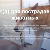 Большая мультимедийная история о том, как жительница Речицы спасает кошек и собак