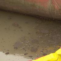 В Свислочь попали загрязняющие вещества Виновных продолжают искать