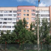 Останется только пять. Деревья возле красного дома на «Фрунзенской» все-таки вырубят