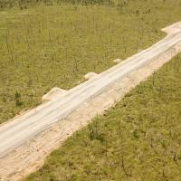 Болотоведы мира призывают правительство Беларуси остановить  дорожное строительство на Ольманских болотах