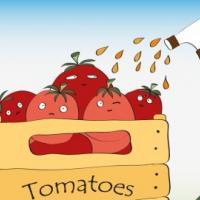 Импортным овощам и фруктам предпочитайте отечественные