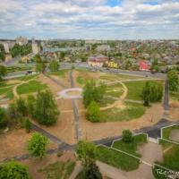 Власти Гродно планируют спасать деревья в центре города