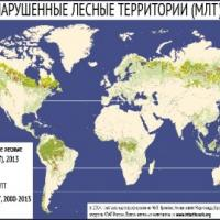За 13 год чалавецтва згубіла 104 млн гектараў непарушаных лясоў