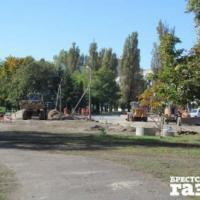 В Бресте при реконструкции набережной уничтожат 240 деревьев