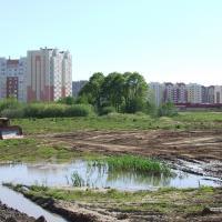 Что нужнее витебскому микрорайону Билево-3: новая школа или оазис с озером и дубами?