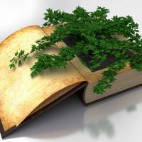 Стань куратором (-кой) первой веган-библиотеки в Гродно!