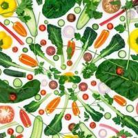 Футурология: что случится с планетой, если все люди вдруг станут вегетарианцами?
