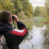 «Время Земли» отказывается от экоакций в Бресте и хочет создать городскую школу деревьев