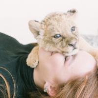 Бизнес на хищнике? Девушка завела в минской квартире львёнка и сдаёт в аренду для фотосессий