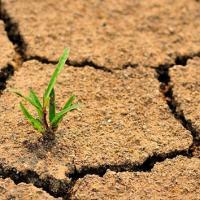 Постановление о предотвращении деградации земель утверждено Советом министров