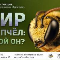 «Зоочетверг» про мир без пчёл!