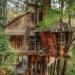 Деревья плюс дом. Тринадцать примеров, как можно строить, ничего не вырубая
