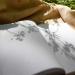 В Беларуси выбрали лучшие публикации на экотематику