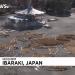У Японіі стварылі ландшафтную карціну з выявай сімвала 2018 года